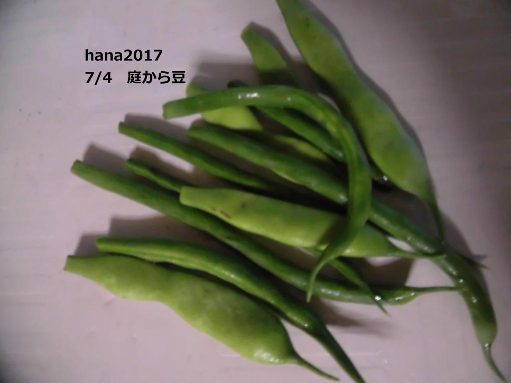 f:id:hanakabu:20170705094516j:plain