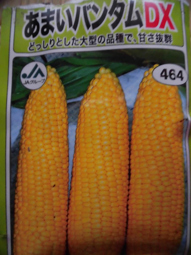 f:id:hanakabu:20170727181716j:plain