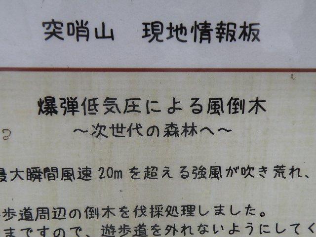 f:id:hanakago:20180504195025j:plain