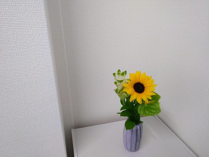 f:id:hanakanzashi87:20200622160055j:plain
