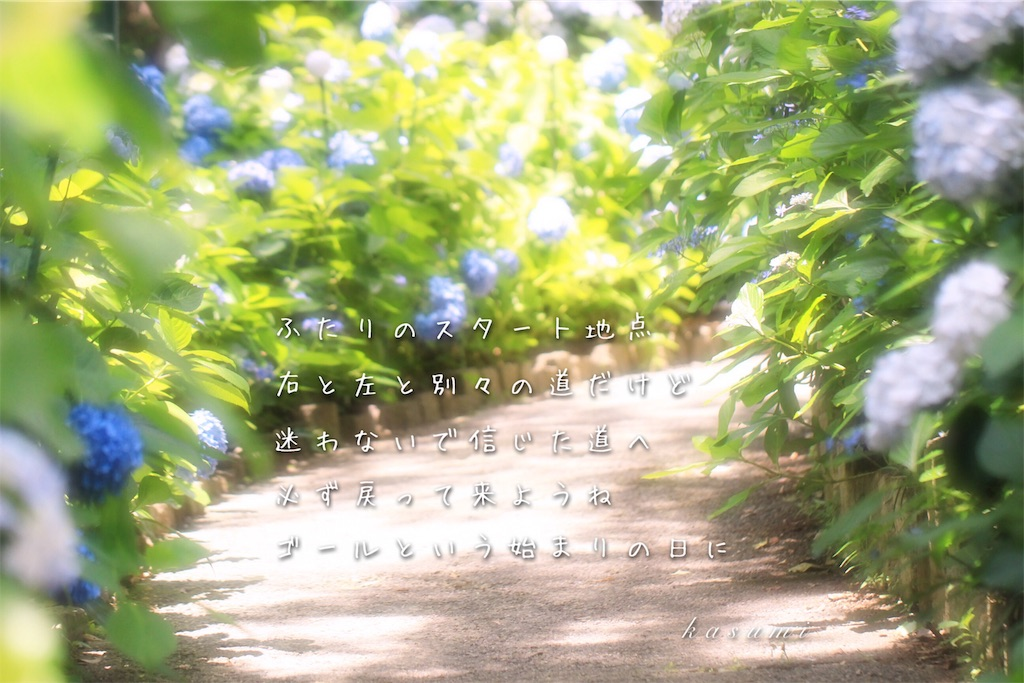 f:id:hanakasumi:20190723084846j:image