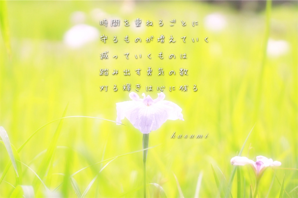 f:id:hanakasumi:20190723090013j:image