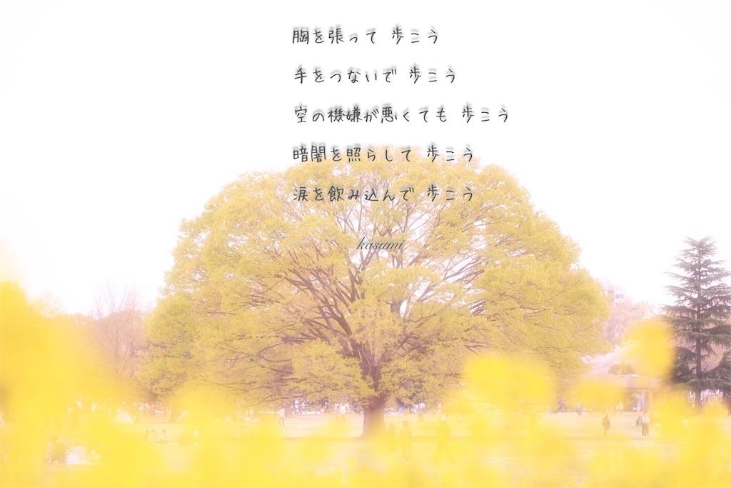 f:id:hanakasumi:20190723092034j:image