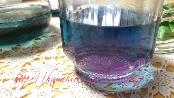 ブルーからパープルに変わるオシャレなバタフライピー茶