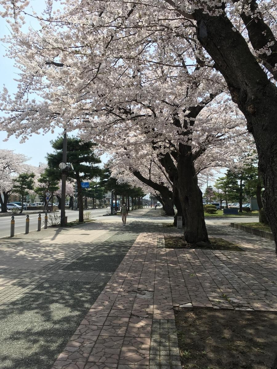 f:id:hanako-mofumofu:20190424152147j:plain