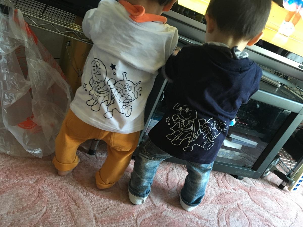 f:id:hanako-mofumofu:20190508151440j:plain