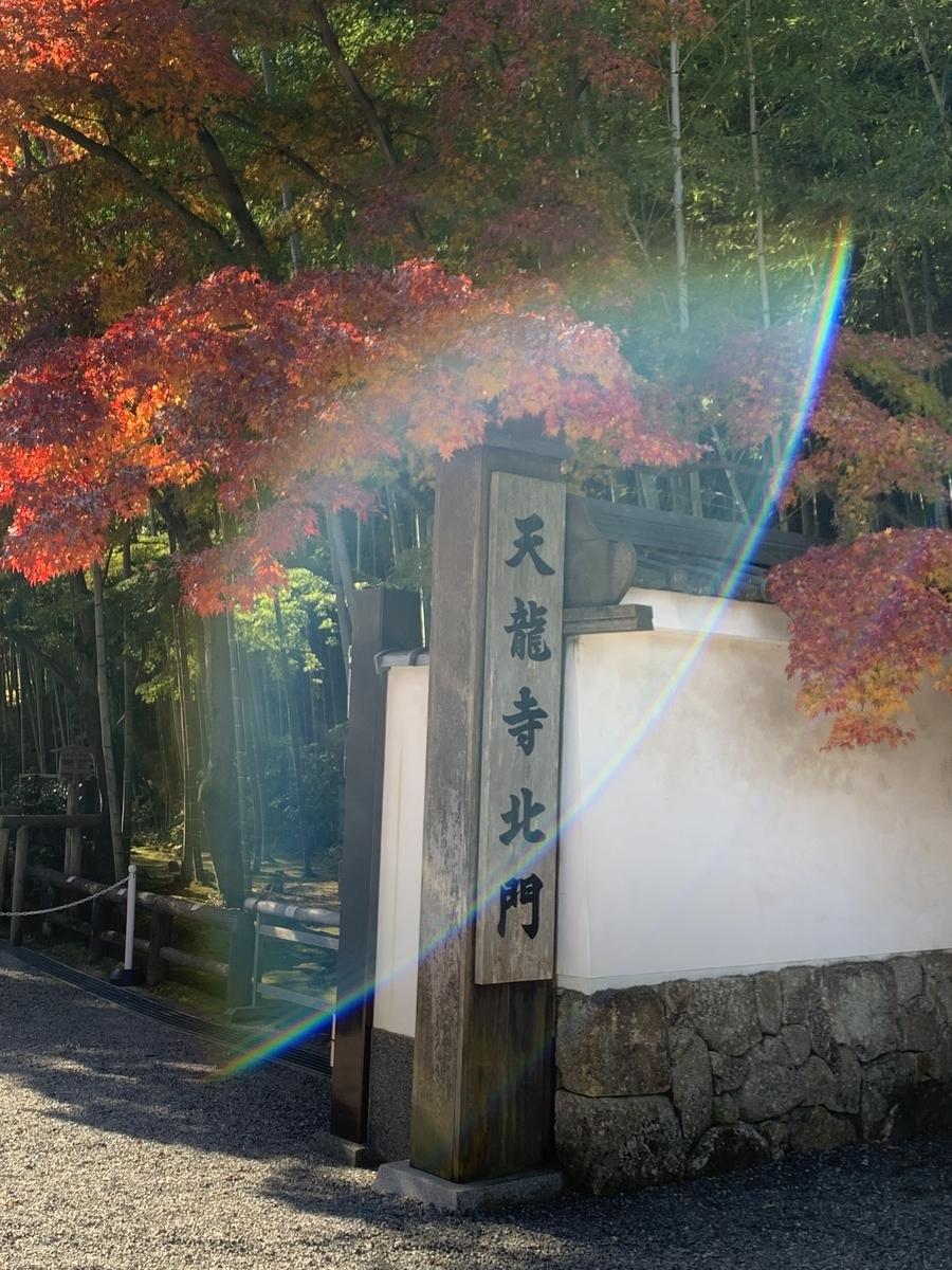 f:id:hanako-nichijyo:20201118125056j:plain