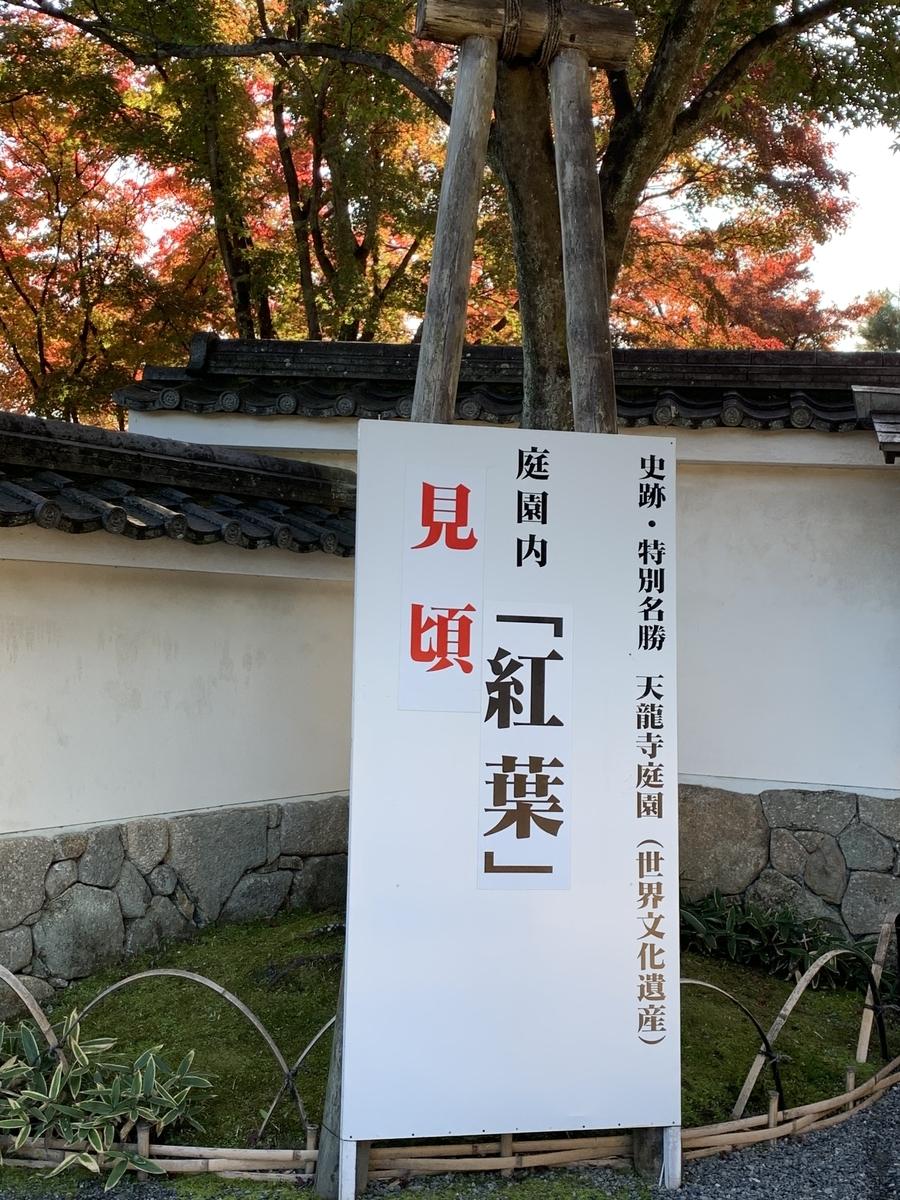 f:id:hanako-nichijyo:20201118125221j:plain