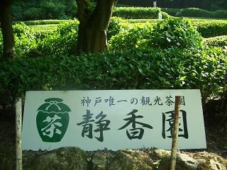 f:id:hanakobe:20170416131412j:plain