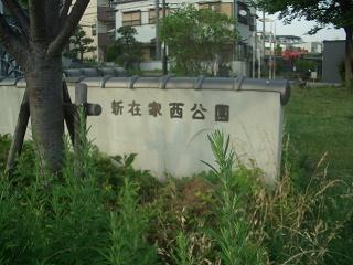 f:id:hanakobe:20170530221156j:plain