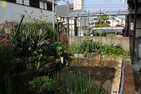 f:id:hanakuruma:20190420095812j:plain