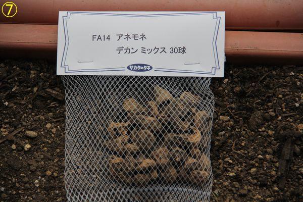 f:id:hanakuruma:20190922085934j:plain
