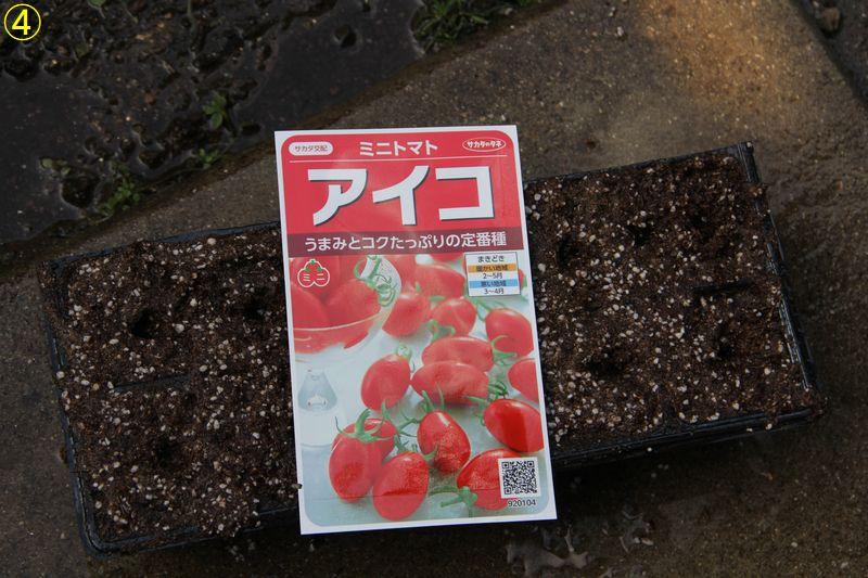 f:id:hanakuruma:20200315090805j:plain