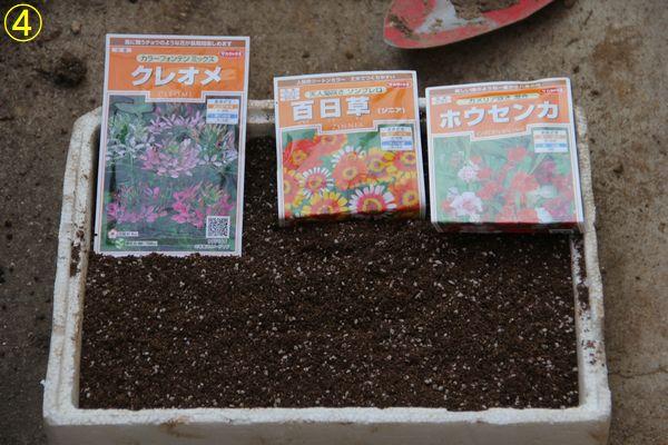 f:id:hanakuruma:20200408114805j:plain