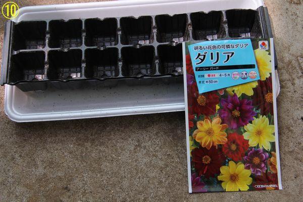 f:id:hanakuruma:20200408115359j:plain