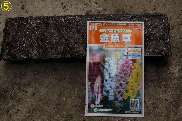 f:id:hanakuruma:20200421105553j:plain