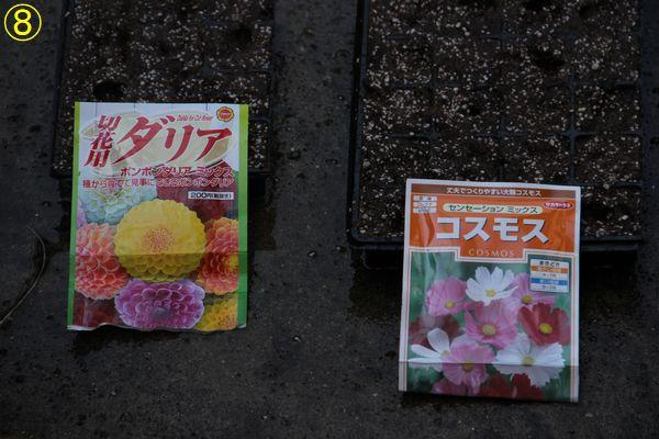 f:id:hanakuruma:20200701113206j:plain