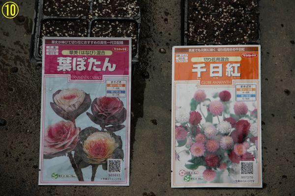 f:id:hanakuruma:20200703101911j:plain