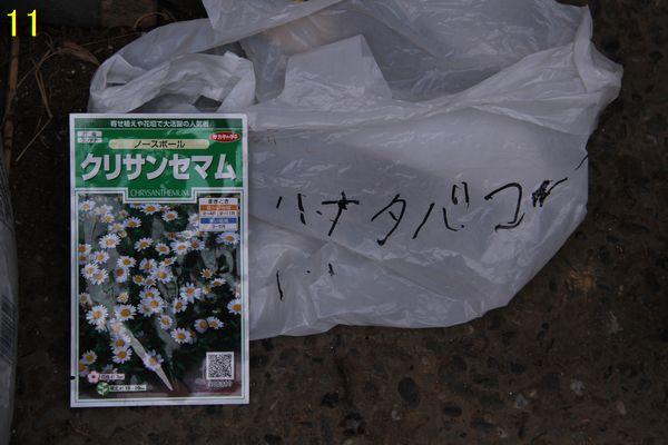f:id:hanakuruma:20200914100003j:plain