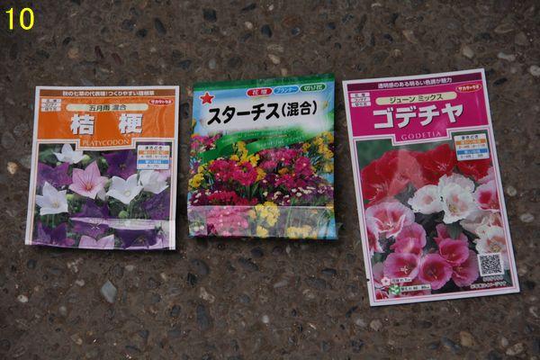 f:id:hanakuruma:20201006102909j:plain