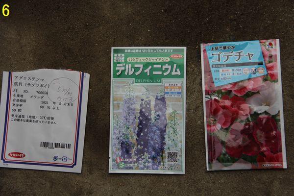 f:id:hanakuruma:20201022103445j:plain