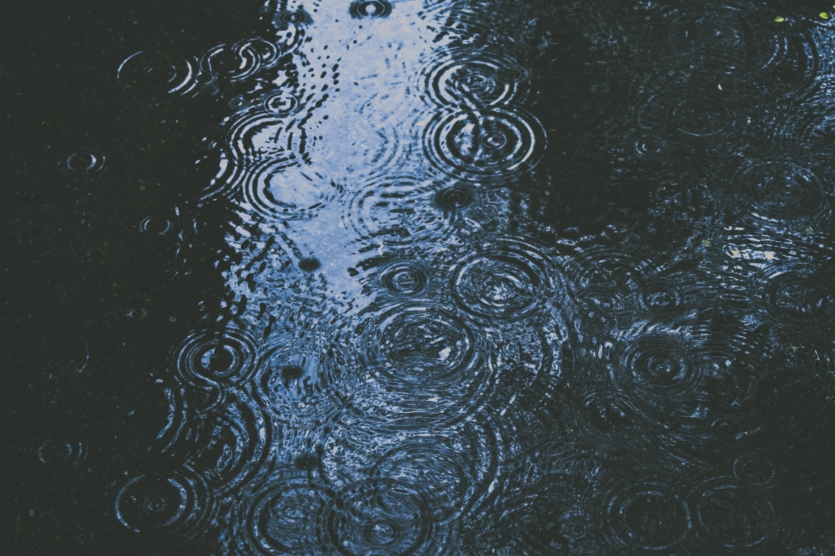 雨の時は太陽を浴びられない