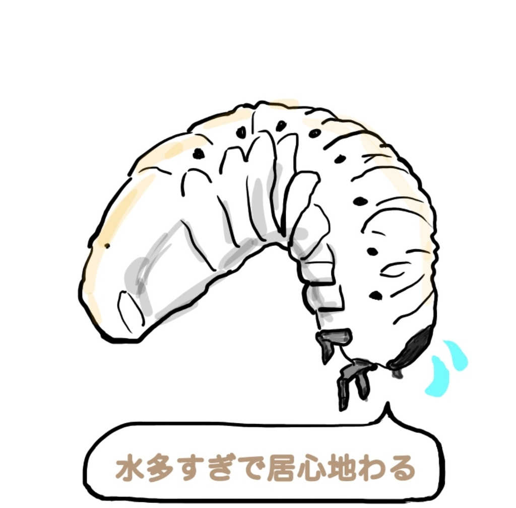 f:id:hanamako1y:20180904220131j:plain