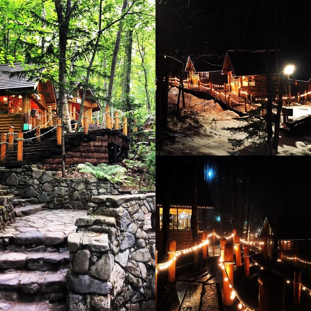森の中のログハウス