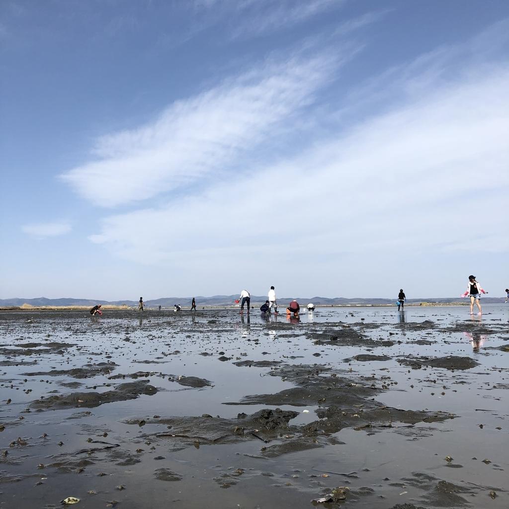 快晴の能取湖、多くの家族連れが潮干狩りを楽しんでいます