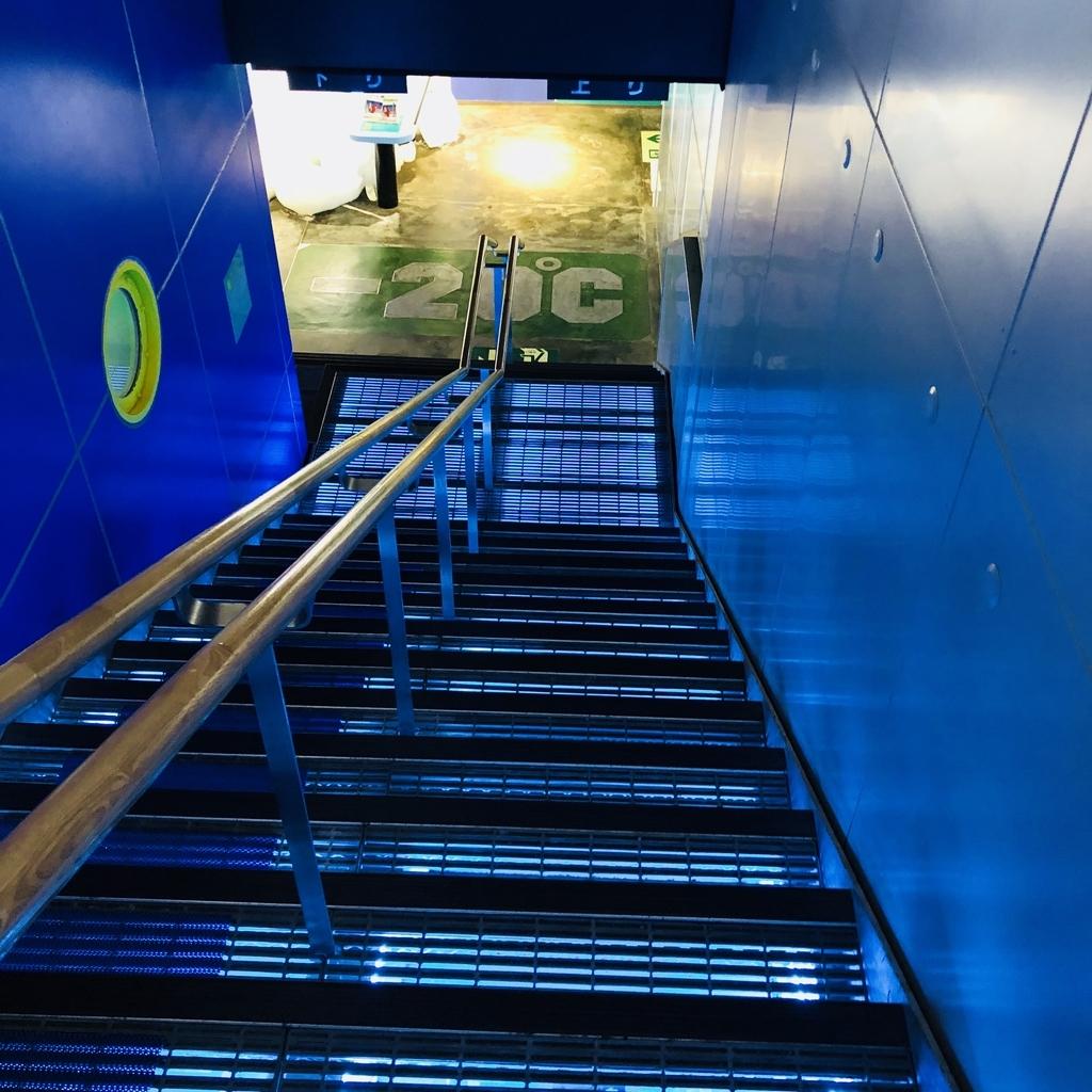 階段を降りて地下の流氷水族館へ