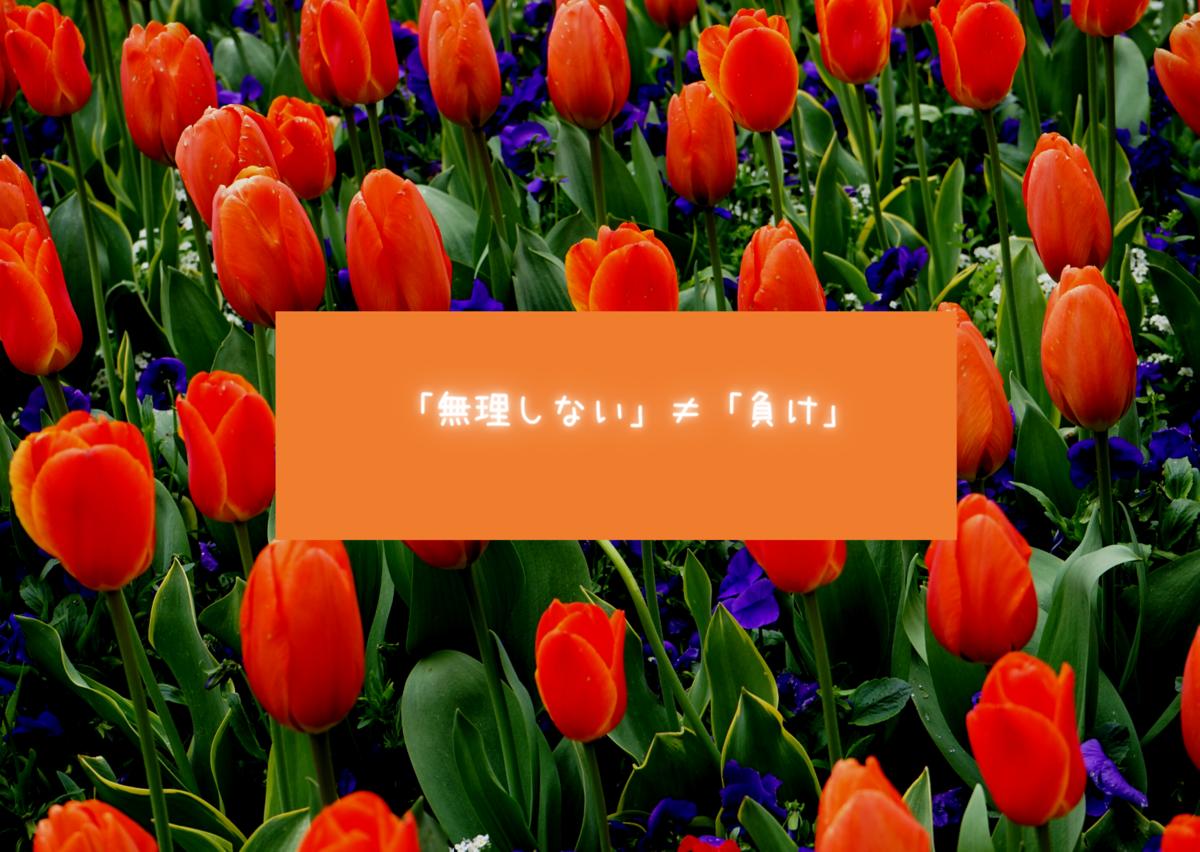 f:id:hanamaru00kun:20200807202541p:plain