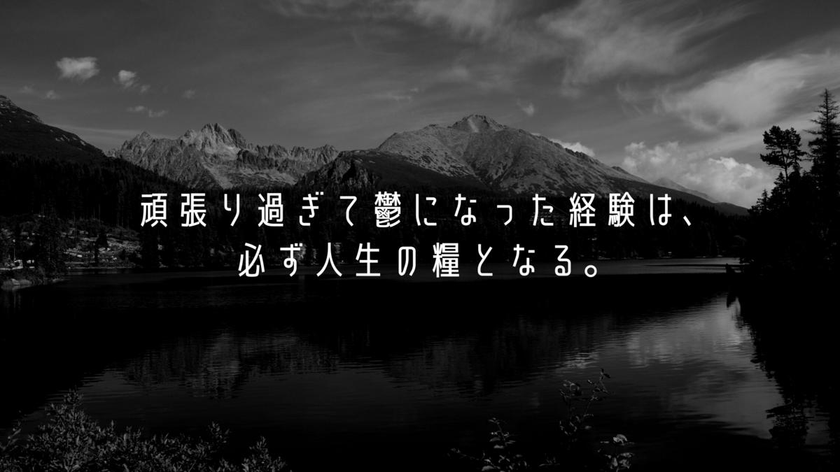 f:id:hanamaru00kun:20201123184003p:plain