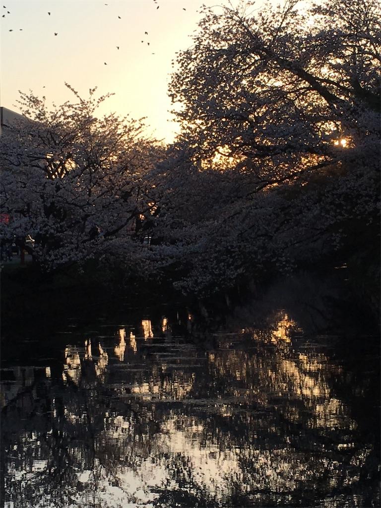 f:id:hanamaru87chan:20170424130447j:image