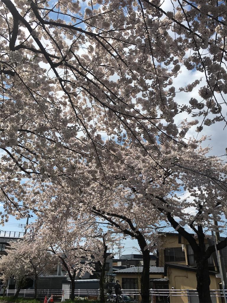 f:id:hanamaru87chan:20170427141129j:image