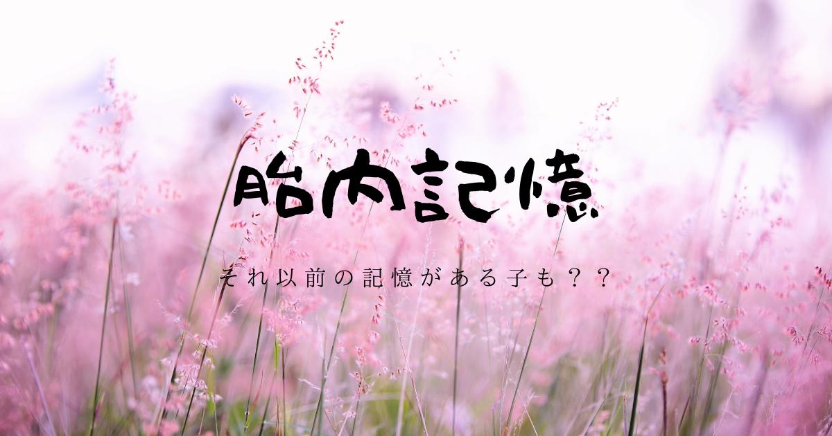 f:id:hanamaru_life:20210309150327p:plain