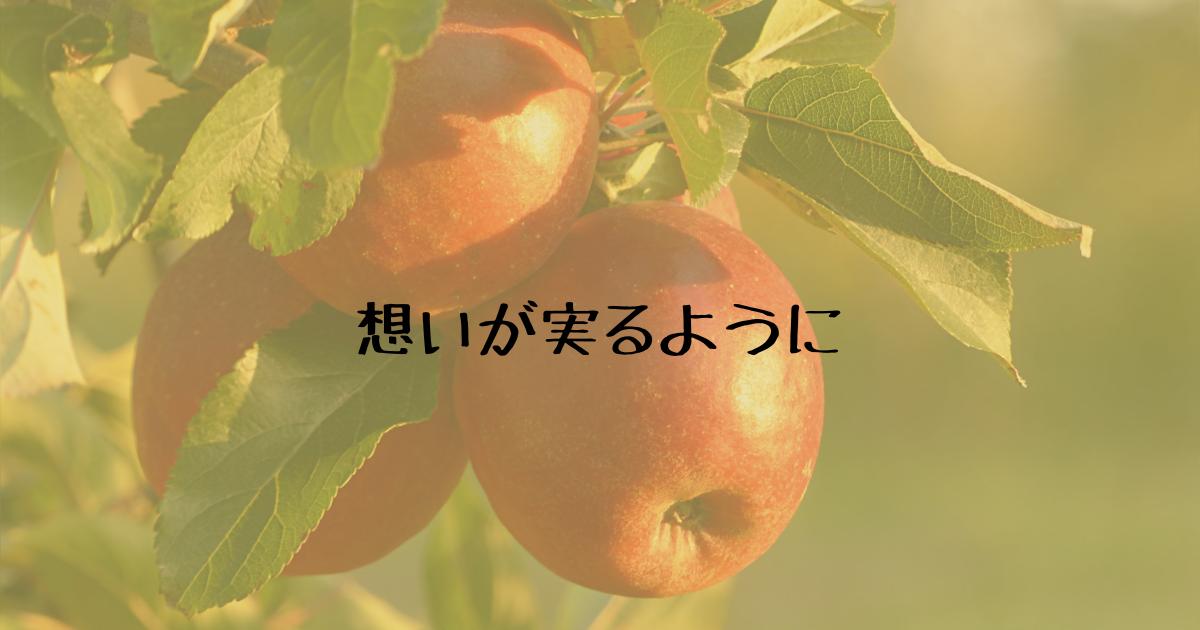 f:id:hanamaru_life:20210413111532p:plain