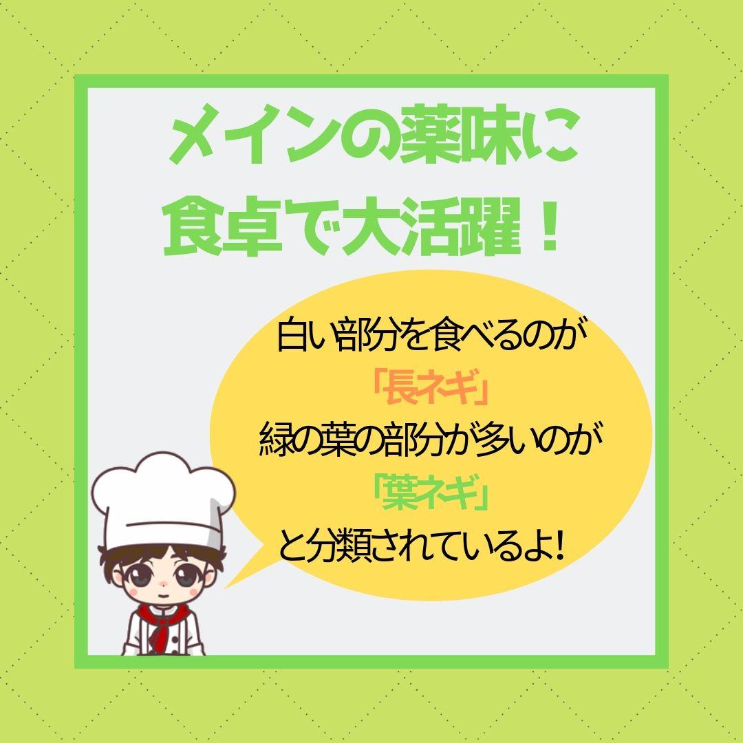f:id:hanamasateri:20190602143227j:plain