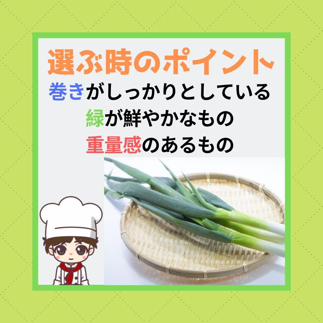 f:id:hanamasateri:20190602143240j:plain