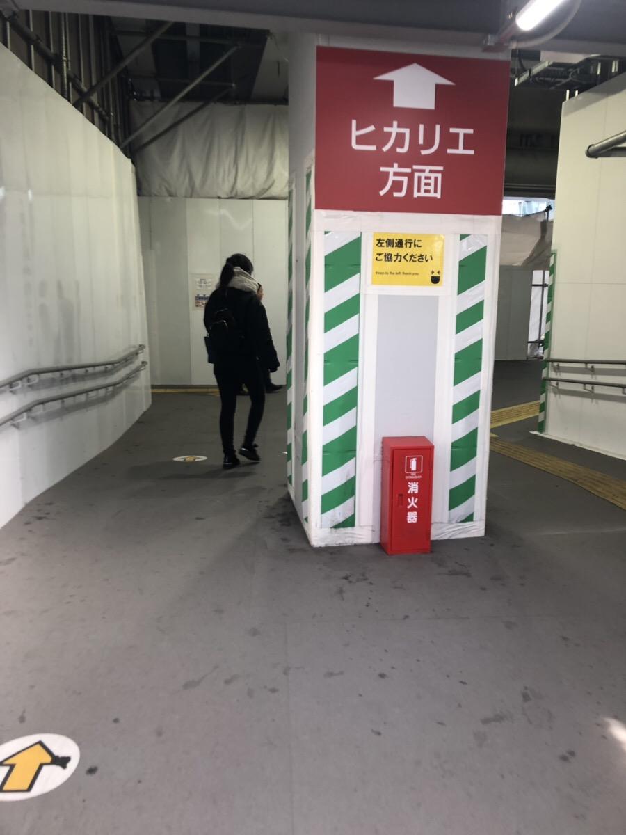 f:id:hanamiseyo:20190328162807j:plain