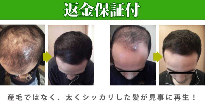 f:id:hanamizuki99999:20161020092910j:plain