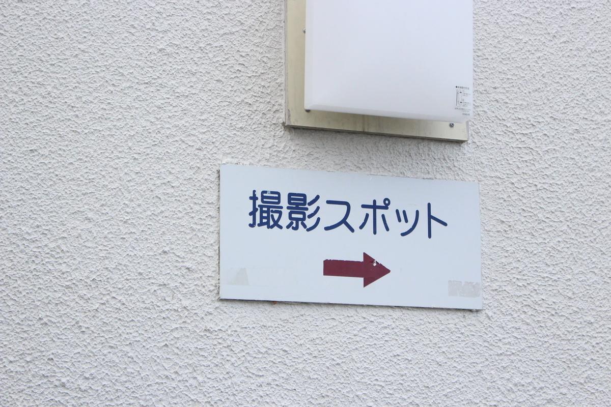 f:id:hanamotohodaka:20190421172130j:plain