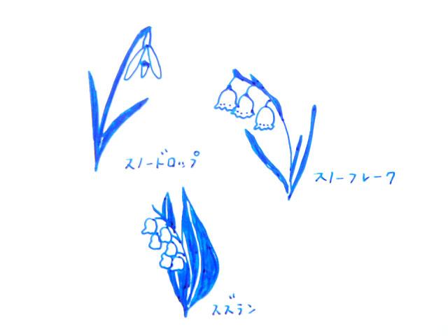 f:id:hanamuguri:20170507234140j:plain