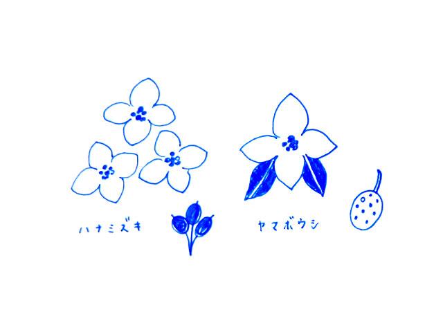 f:id:hanamuguri:20170509232421j:plain