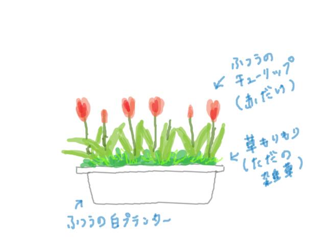 f:id:hanamuguri:20180522005044j:plain