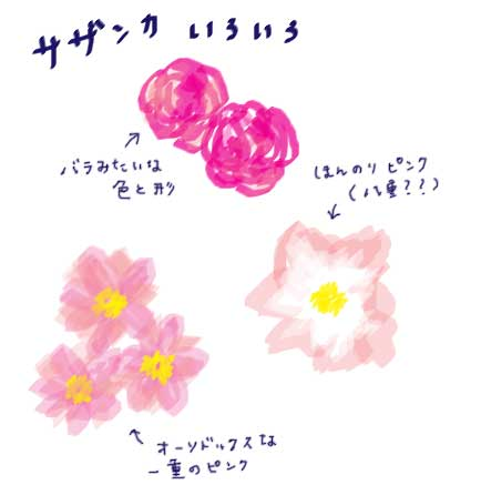 f:id:hanamuguri:20181108004201j:plain