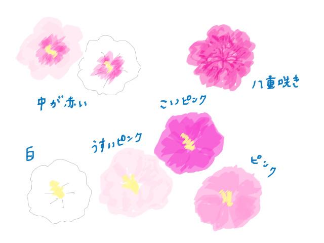 f:id:hanamuguri:20190912000821j:plain