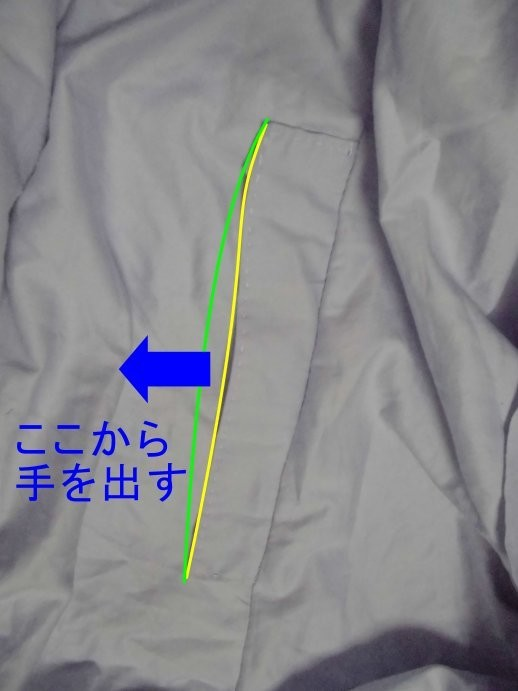 f:id:hanamurasayaka:20190224230224j:plain