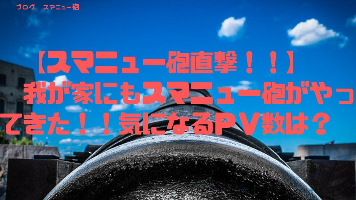 f:id:hananekochang:20190621162110p:plain