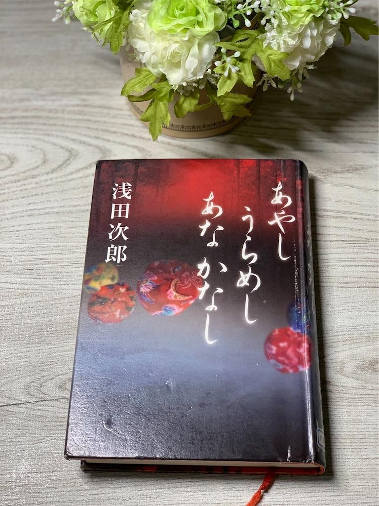 f:id:hananekochang:20190822062404j:image