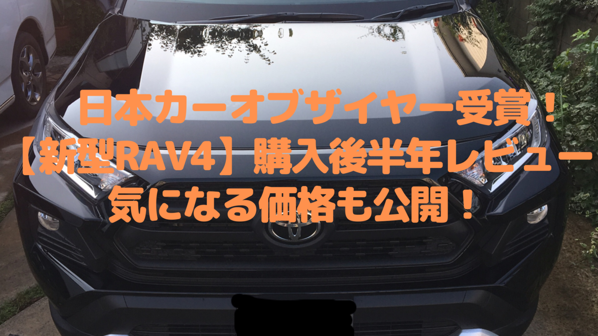 f:id:hananekochang:20191207125358p:plain
